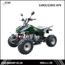 Veículo todo-o-terreno, ATV EPA, CVT ATV