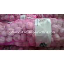 Chinese White Garlic 10kg 20kg Mesh Bag