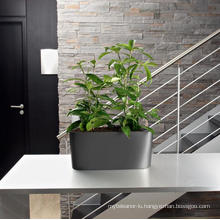 (BC-F1034) Fashionable Design Plastic Self-Watering Flower Pot