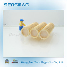 Manufacture Customized Strong Powerful Neodymium Cylinder Magnet for Motor