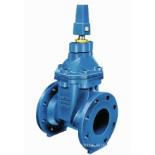 Resilient Seat Gate Valve BS5163
