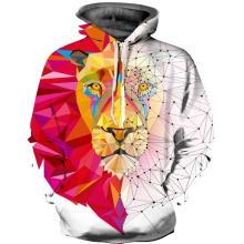 Magical lion drawstring hoodie