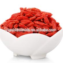 the ningxia goji berry dried goji berry