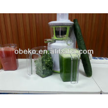 DC motor with the juicer with high quality