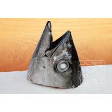 Frozen Tuna Head Pricked In Plastic Vacuum Bag