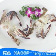 HL003 medio cangrejo de natación azul en cartones