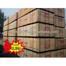 Uma vez formando filme enfrentado contraplacado (ShandongLinyi produtos de madeira)