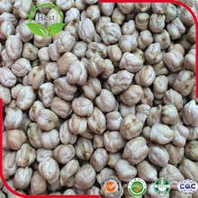 White Kabuli Chickpeas for Cooking