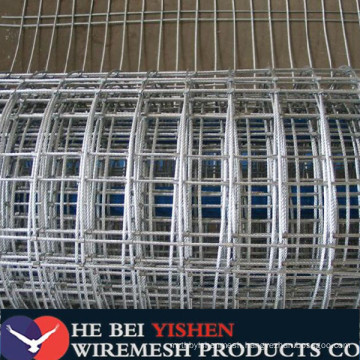 High quality galvanized square welded wire mesh direct factory