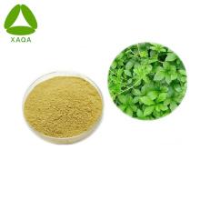 Gynostemma Extract Powder 10: 1 Matérias-primas para cuidados de saúde