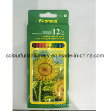 12PCS Water Soluble Color Pencil Set with Customized Logo