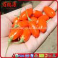 Factory supply dried Ningxia origin goji berry