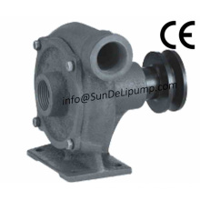 Centrifugal Cast Iron Marine Sea Water Pump for Marine Diesel Engine Cooling