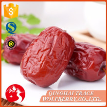 China professional manufacture dried food of red date