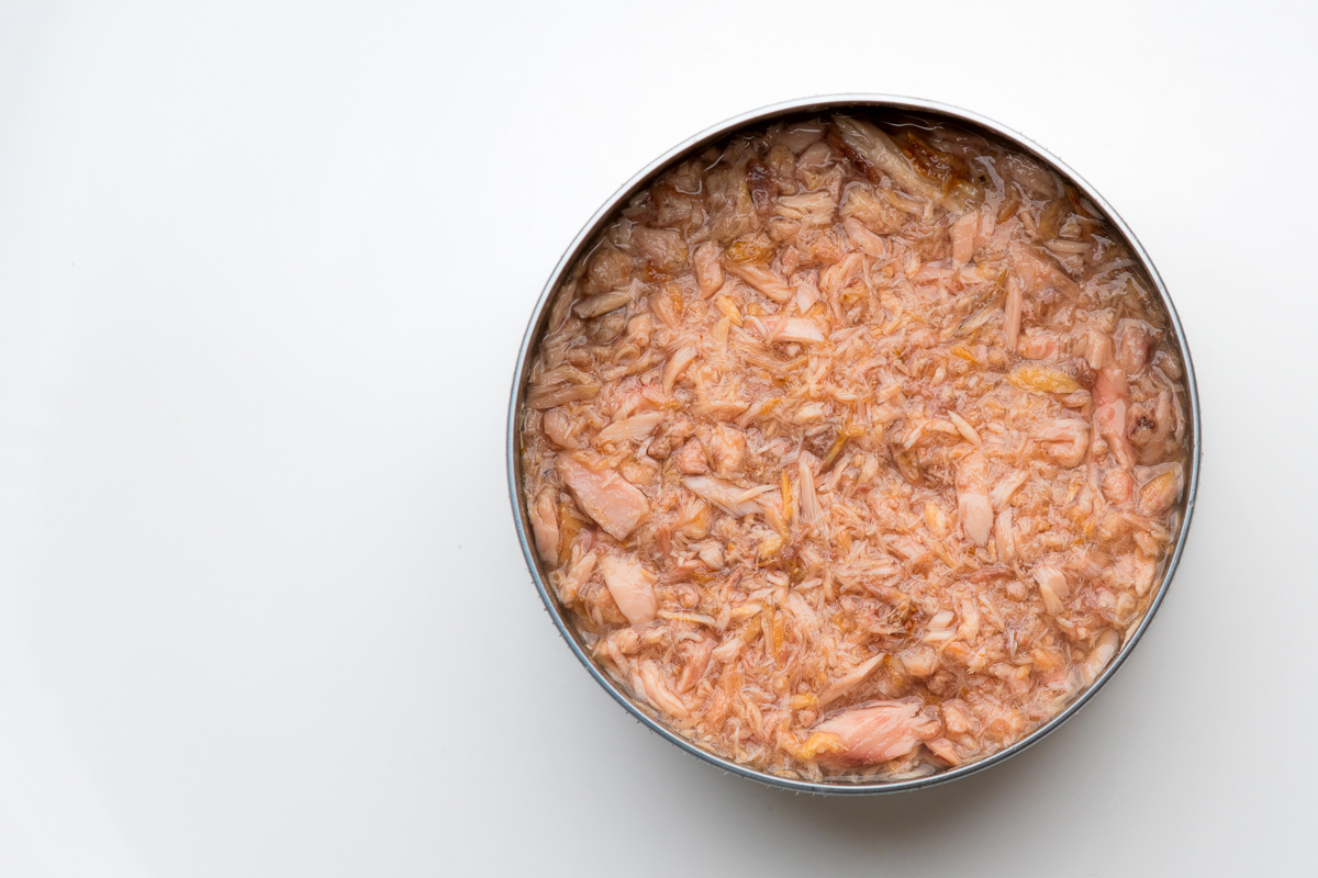 Wholesale Best Canned Tuna
