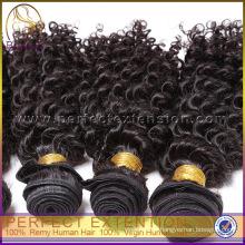 Online-Shopping-Indien Günstige Kinky Curly Großhandel Virgin Indian Hair