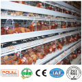 a Frame Commercial Poultry Egg Layer Cage Chicken Battery Coop