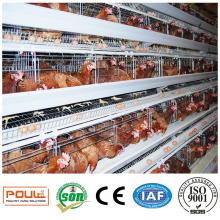 Hühnerkäfig Farm Coop für Geflügel und Nutztiere