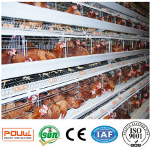 Chicken Cage Farm Coop para Avicultura y Ganadería