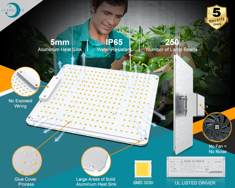 100W LED Plant Grow Light für Gemüse