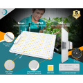 LED Pflanzenlicht Grow Flower Panel Licht Lampe Hydroponic