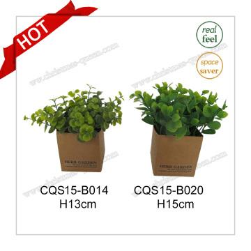 H15cm Real Touch пластиковые искусственные растения цветок шелковый цветок