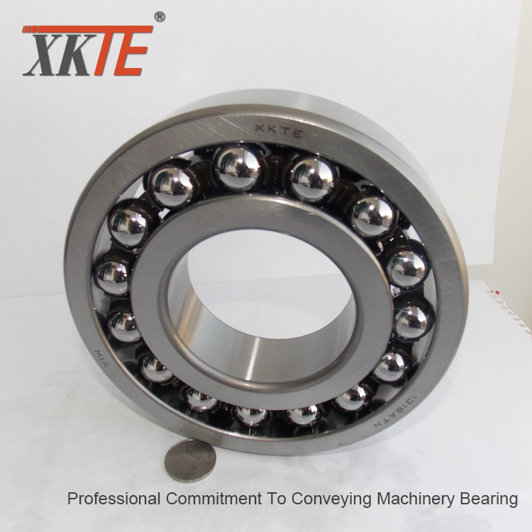 Nylon Cage Self Aligning Ball Bearing 1316atn