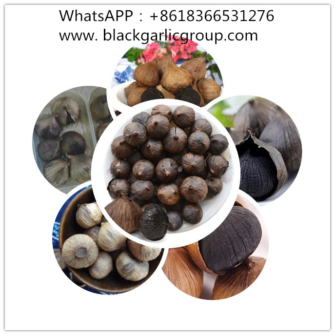 Special Processing in Black Garlic