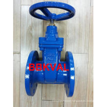 Wras Resilient Gate Valve