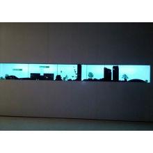 46inch tat transparente LCD-Anzeige