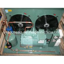 R404A 10HP Bitzer Brand Condensing Unit (4VES-10Y)