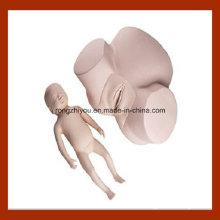 Modèle de formation de sage-femme en haute qualité, modèle de pratique du pélvis avec tête de fœtus