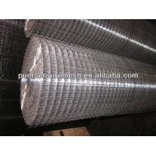 ISO decorar Eléctrico de malla de alambre soldado galvanizado
