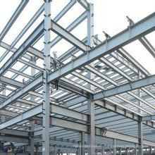 Prefabricated Light Steel Structure Warehouse Building (wz-7780)