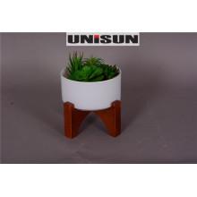 Bonsai para la decoración casera en planta perenne con la base de madera (18-HF3959A)