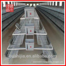 Design layer chicken cages/chicken cages for sale