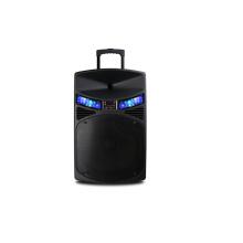 Multifunktionaler Bluetooth Portable Aktiver Trolley Lautsprecher mit FM