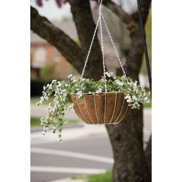 Growers Hanging Basket enthält Liner