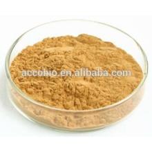 calidad alimentaria de alta calidad Hoodia Cactus Extract 10: 1