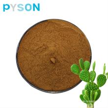 Cactus Extract  powder