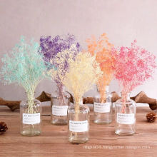 Factory price dried decoration dried violet flowers dried jasmine flowers