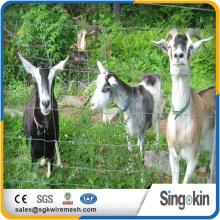 wholesale bulk cattle velding goat farming cattle velding goat farming