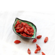 suministro de fábrica de baya wolfberry / goji orgánica seca natural