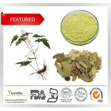 Pure Natural Sex Medicine Epimedium Extract Icariin 98%
