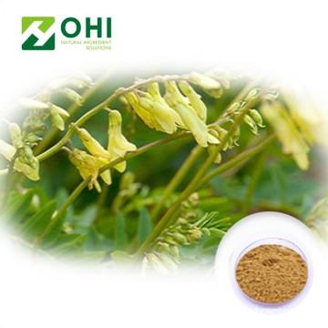 Astragalus-wortelextract polysacharide