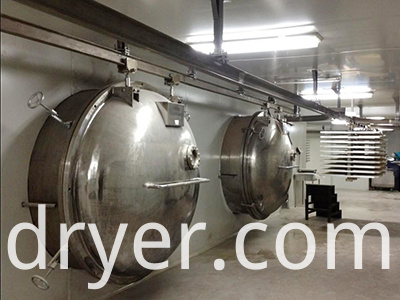 Stainless steel vacuum freeze dryer