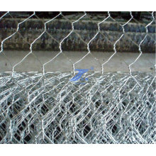 Hot Dipped Galvanized Hexagonal Wire Mesh (TS-J52)