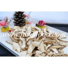 Champignons en forme de tranches de champignons en bonne santé Shiitake Mushroom