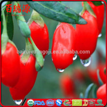 Nueva cosecha comprar bayas de goji bayas de goji efectos secundarios qué es la baya de goji