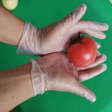 Hand Gloves Vinyl Disposable Non-Sterile Powdered